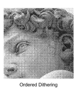 csm_detail-ordered-dithering_69c1f0d5c0